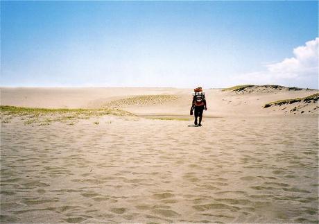 砂漠に来た気分