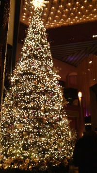 クリスマスツリーが綺麗でした