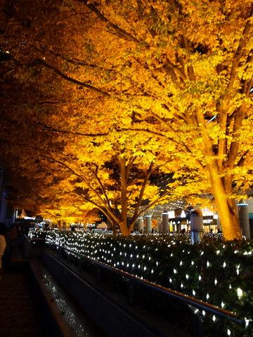 東京ドームシティ&ラクーアのイルミネーション