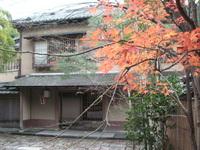 京都のイロイロ