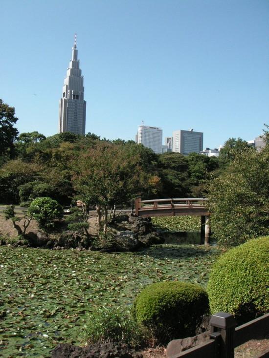 新宿御苑でのんびりお散歩