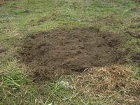 空き地開墾