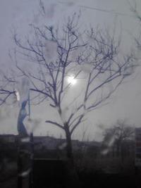 今日は朝から…天候不順
