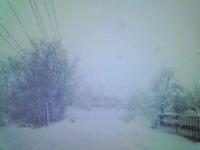 雪・雪・雪…大雪!!