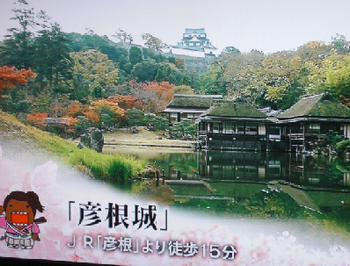 日本100名城の一つ、井伊氏14代の居城、彦根城