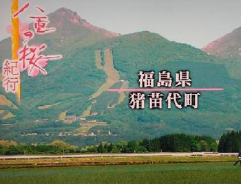 『八重の桜』の脚本担当の山本むつみさんは『ゲゲゲの女房』も