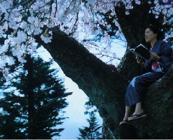 八重の桜:第3回、蹴散らして前へのあらすじなど